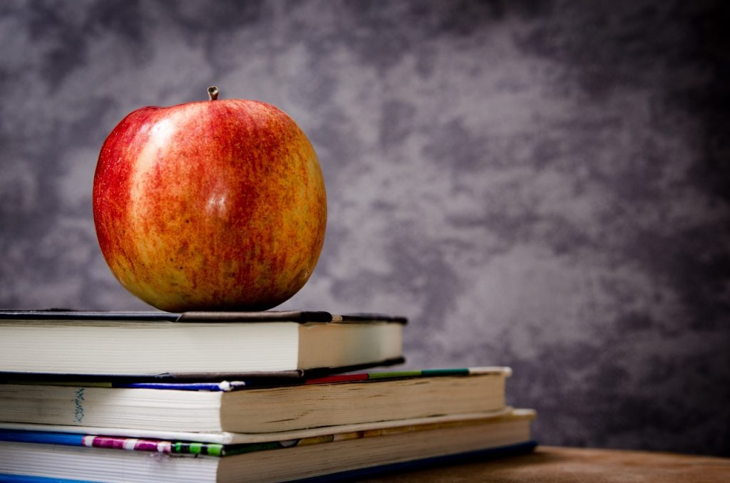 apple-education-school-knowledge-605831